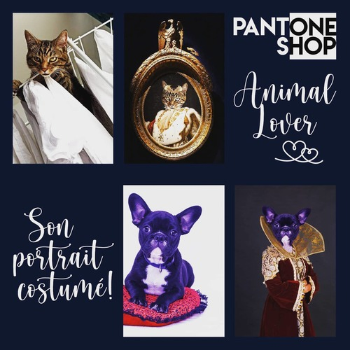 Amenez une photo de votre chat 🐈 votre chien 🐕 ou de votre animal 🥰 #Transformation #Design #PantoneShop